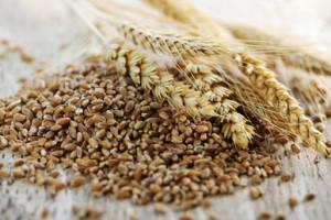 búzaallergia nem gluténérzékenység