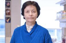 A cöliákia kutatásáért magyar orvost díjazott az UNESCO