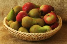 Fókuszban a rostpótlás - almatermésű gyümölcsök!