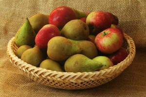 Rostpótlás és az almatermésű gyümölcsök