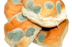 Mit csináljunk a kenyérrel, ha megpenészedett?