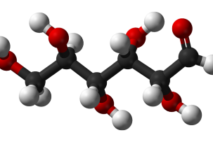 glükóz - monoszacharid