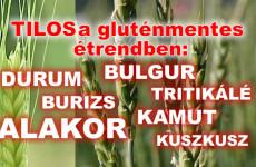 Alakor, tönköly, bulgur és a kuszkusz is tilos a gluténmentes étrendben!