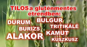 Az alakor és durum is tiltott búzák a gluténmentes diétában