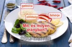 CÖLITÁNYÉR azaz OKOSTÁNYÉR ®  gluténérzékenyeknek