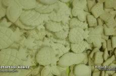 A nélkülözhetetlen gluténmentes háztartási keksz