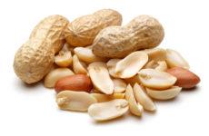 Mogyoróallergia és más, diófélék allergiái