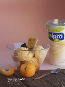 tej- és gluténmentes fagylalt recept alpro