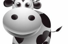 Melyik tejtermék gluténmentes? Fogyaszthatóak-e a gluténmentes étrendben?