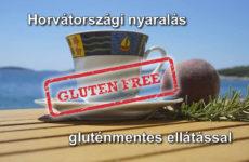 Horvátországi laktóz- és gluténmentes nyaralási lehetőség  Prvic szigeten (x)